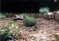 2005laprimaaiola