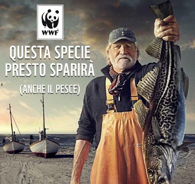 Immagine pesca WWF