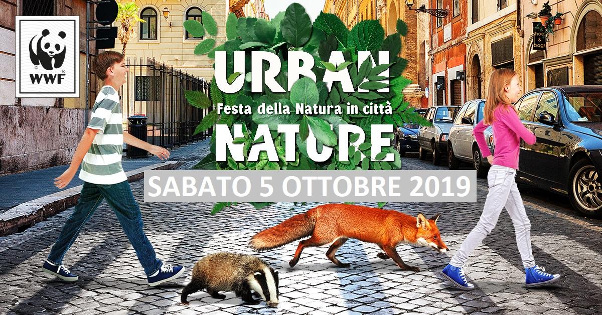 Locandina Livorno 2019