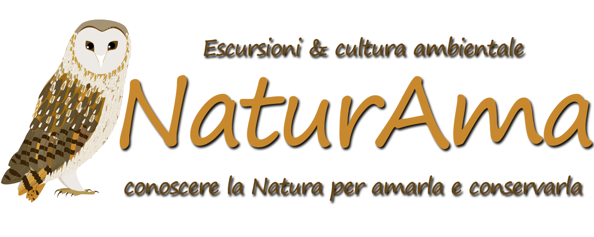 naturama logo